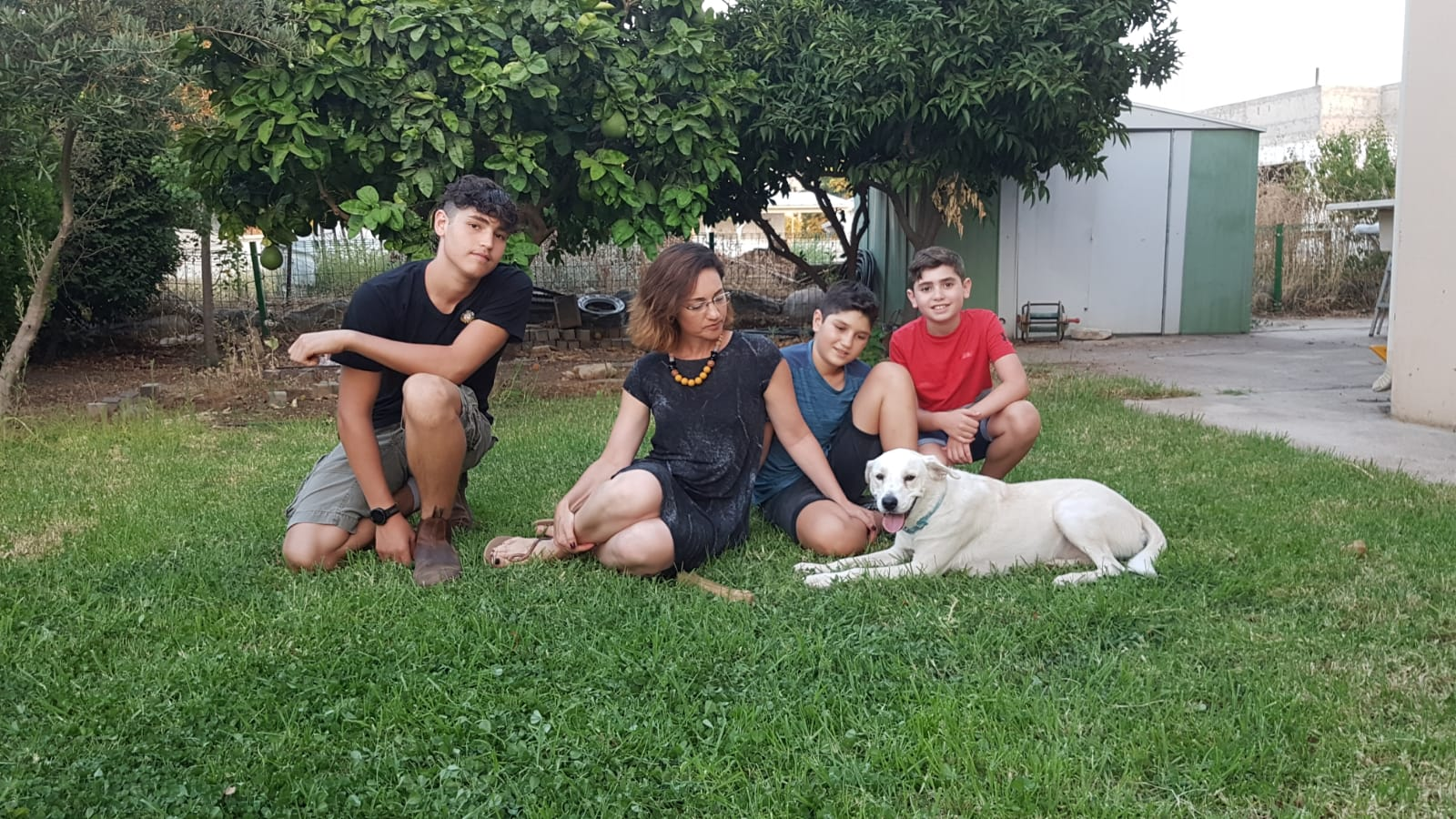צוף – משפחת ג׳רסי